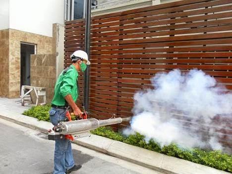 Dịch vụ diệt muỗi Bình Đan