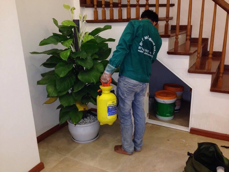 Những điều cần chú ý khi phun thuốc diệt muỗi tại nhà