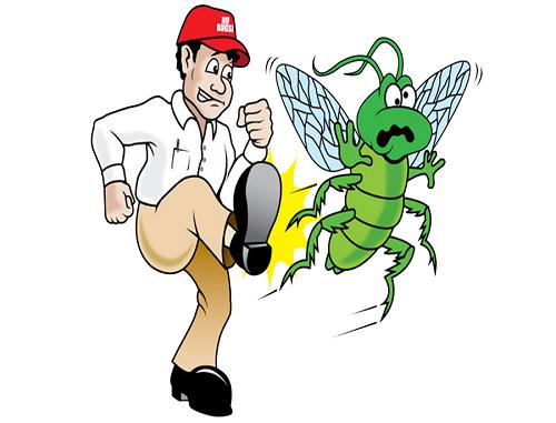 Tư vấn cách diệt côn trùng trong nhà vệ sinh hiệu quả