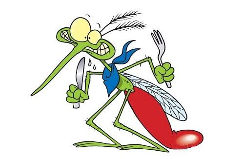 Tác hại của loài muỗi và cách phòng chống