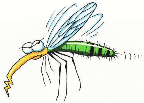 Phun diệt côn trùng gây hại