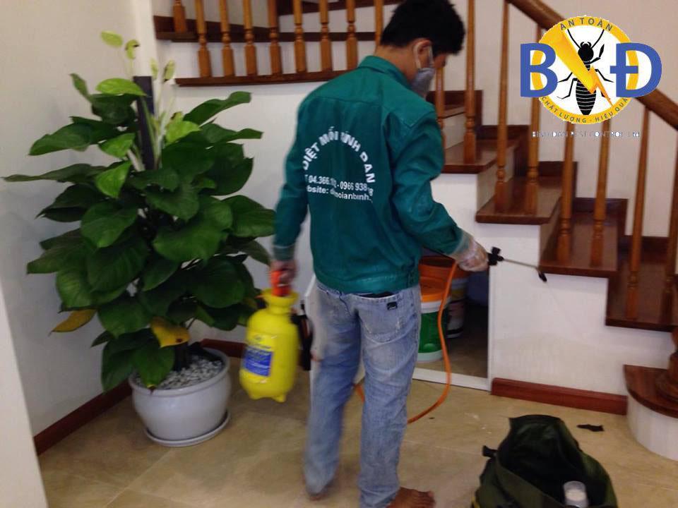 Nhân viên Công ty Bình Đan tiến hành phun diệt côn trùng